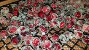 Frosted Cranberries - drying