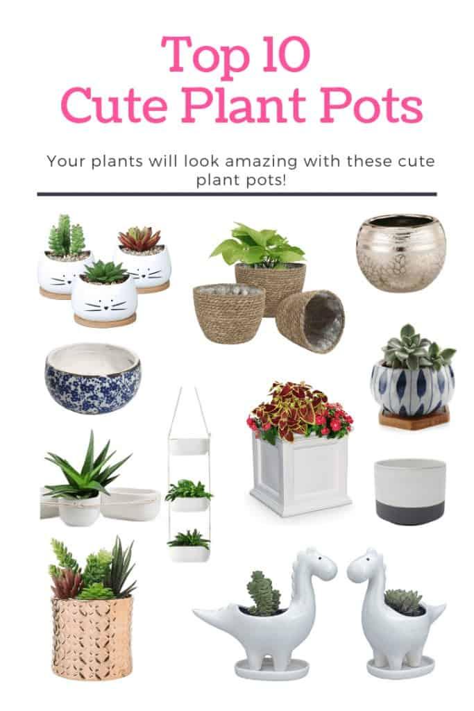 Top 10 Cute Plant Pots